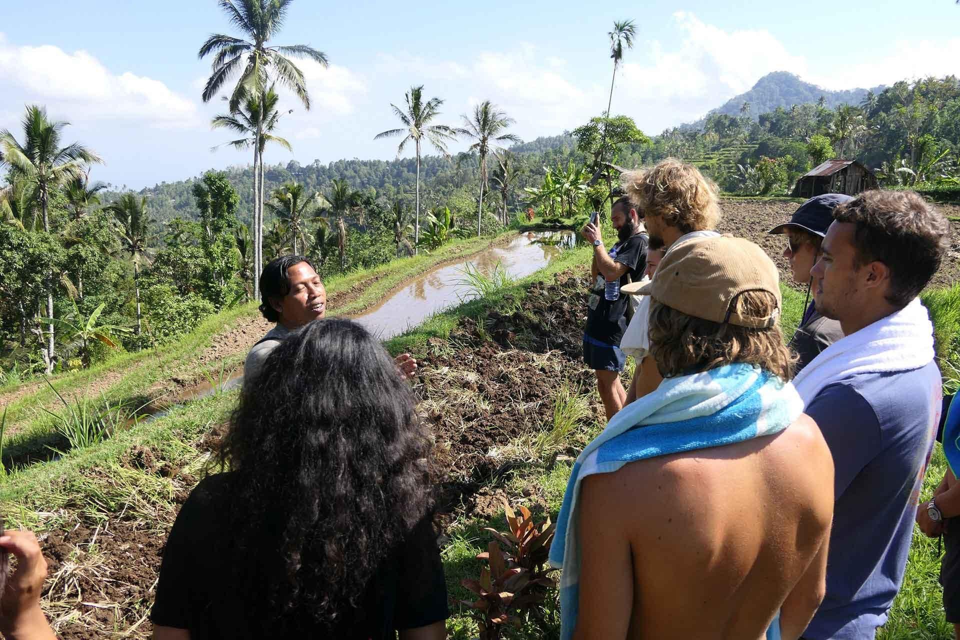 Upskill eco tour in Bali